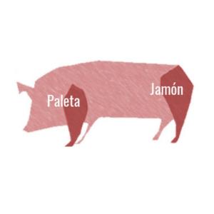 Diferencia entre Jamón y Paleta